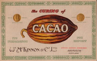 mckinnon cocoa bean