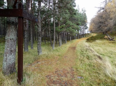 Lion's Face Drive near Invercauld scene of Rights of Way battle in 1891