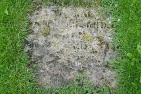 Several flat memorial stones are lost to us under turf