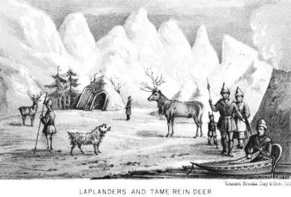 last reindeer